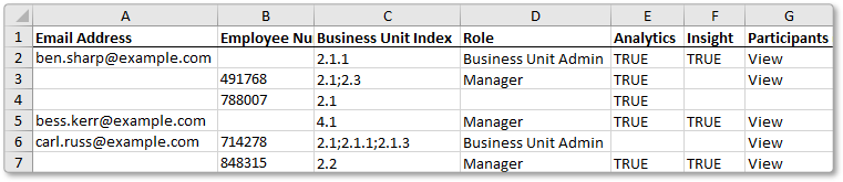Excel import access