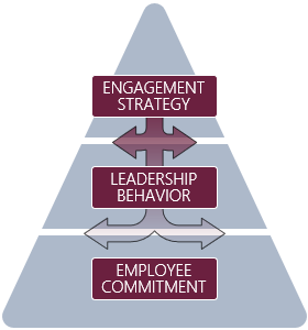 Engaged Organizational Experience