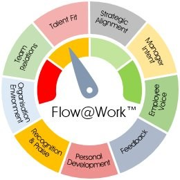 Flow@Work employee engagement model
