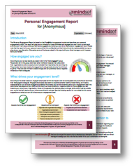 Personal engagement report